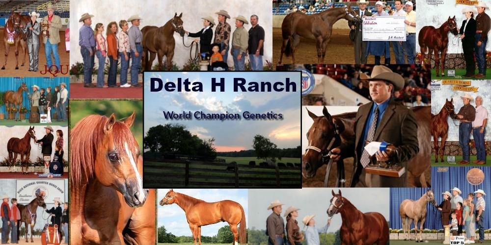 delta h collage